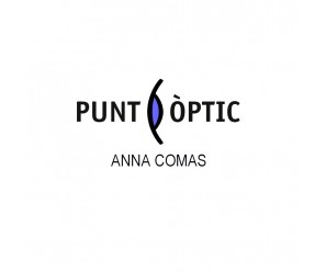 CENTRE AUDITIU PUNT OPTIC