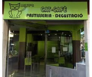 MIXU'S CAT CAFE